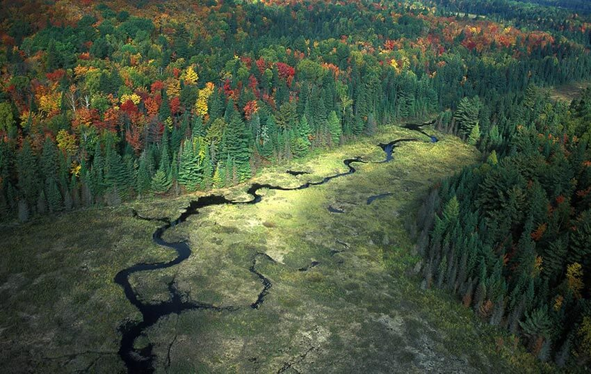 Aerial view of Algonquin Park