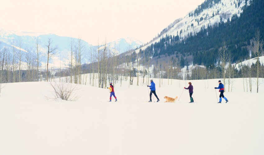 Family cross-country skiing with their dog.