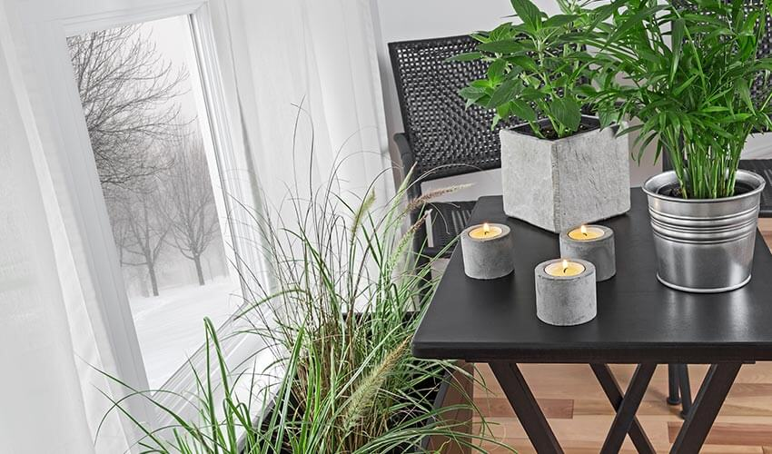 Potted plants and candles on a table next to window in a modern home.