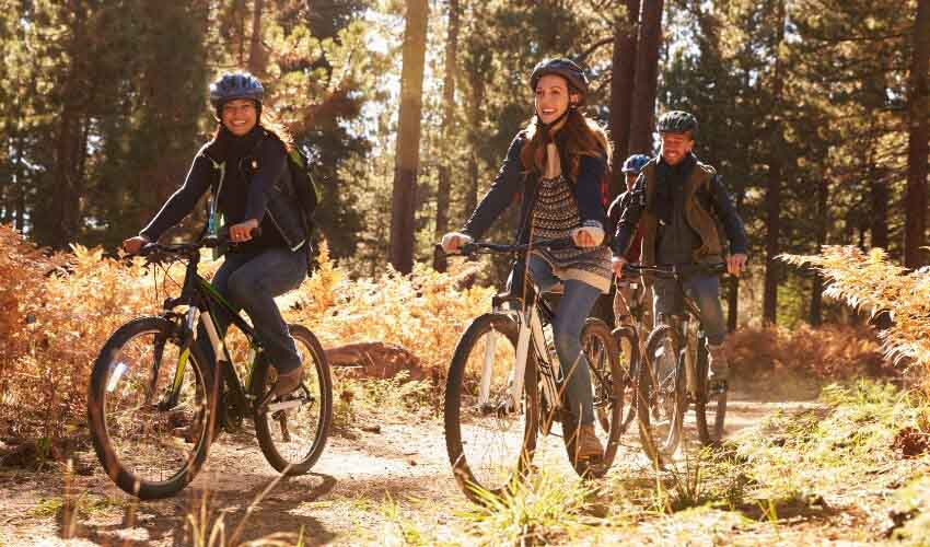 Three friends riding their bikes in a forest trail on a nice day.