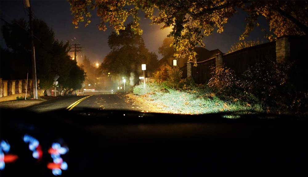 Autumn leaves blowing across a dark road in front of a car's headlights