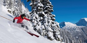 Person in red jacket skiing through powder past snow-covered pine trees at ski resort in Canada