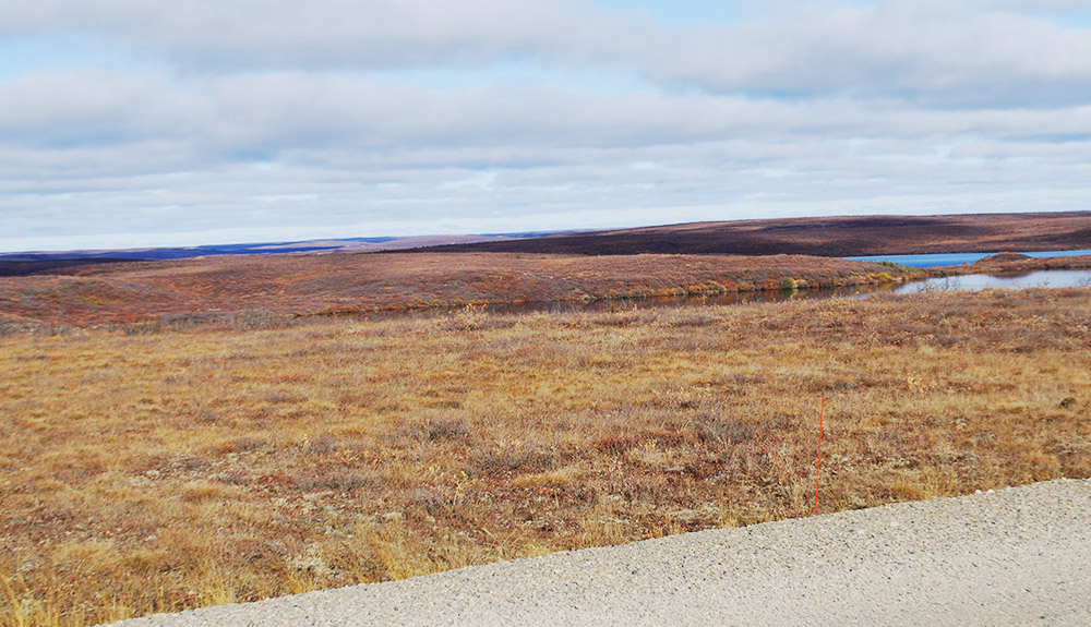 The expansive tundra landscape of the Tuktoyaktuk region
