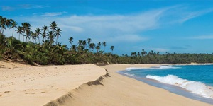 Deserted beach with golden sand, bright blue water and palm trees in Manati Puerto Rico