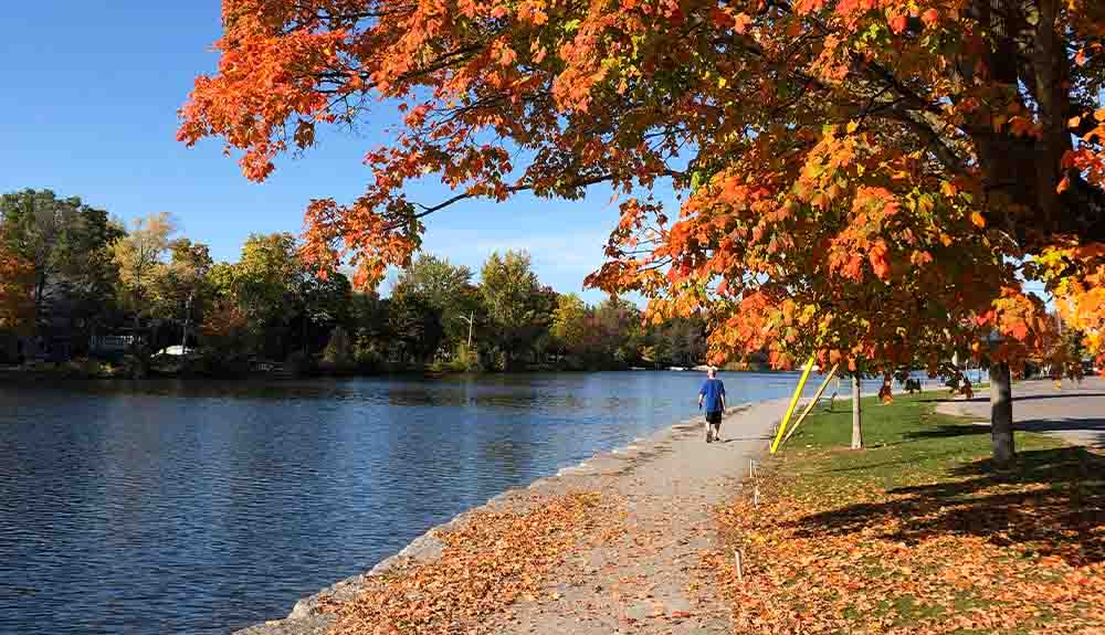 A pedestrian is shown walking on a path along the Trent-Severn Waterway in the fall