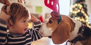 Child wearing fabric reindeer antlers facing dog wearing matching antlers