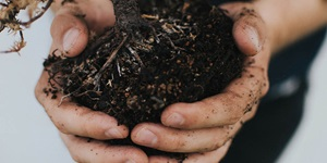 Hands are shown holding soil