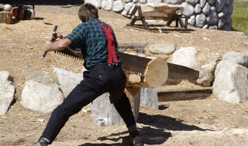 Man sawing log in competition