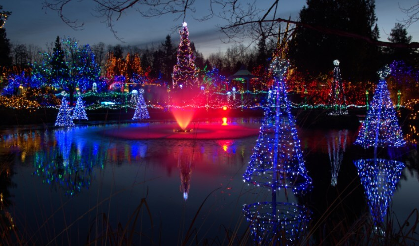 Christmas tree light display near a pond with a fountain.