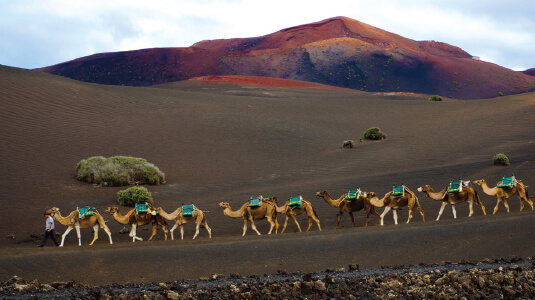 Canary Island and Moroccan Moments
