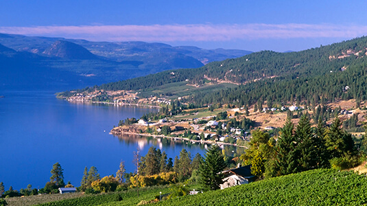 Winery vineyard overlooking Okanagan Lake located on the Naramata Bench situated in Naramata and Penticton, British Columbia, Canada.