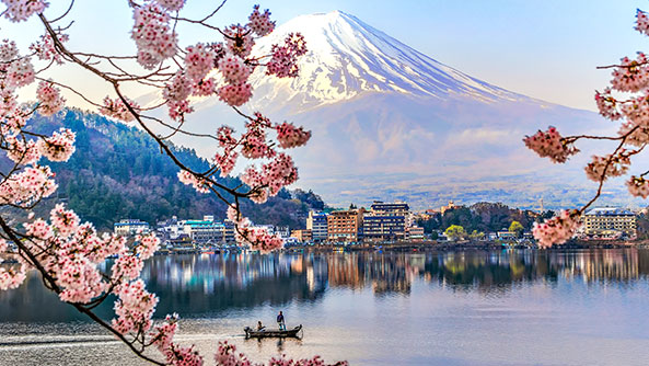 Fisherman sailing boat in Kawaguchiko Lake and Sakura with Fuji Mountain Reflection