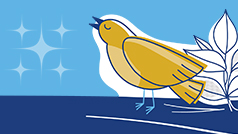Illustration of gold bird on a blue background