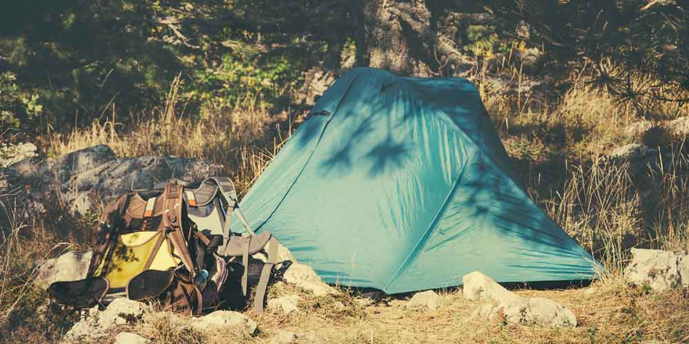 Quiz: How to Survive a Week in the Woods