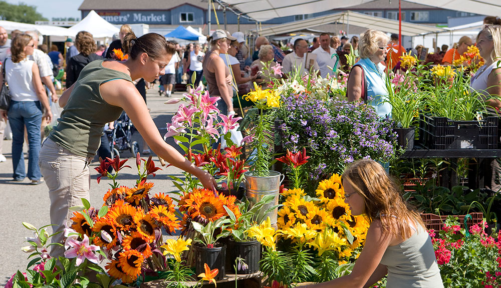 Shoppers browse at a flower stand at the St. Jacobs Market
